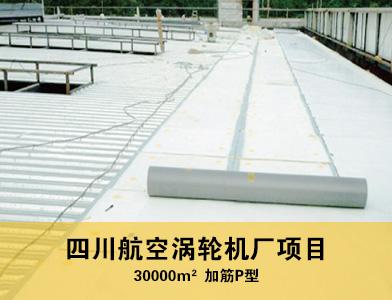 四川航空涡轮机厂项目