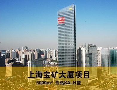 上海宝矿大厦项目