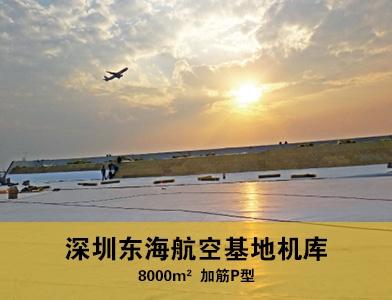 深圳东海航空基地机库
