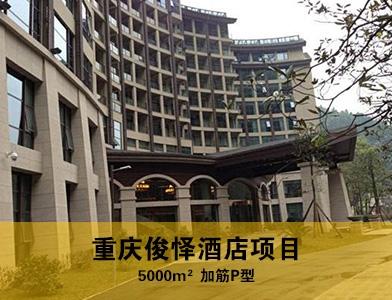 重庆俊怿酒店项目